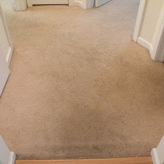Before Carpet Cleaned